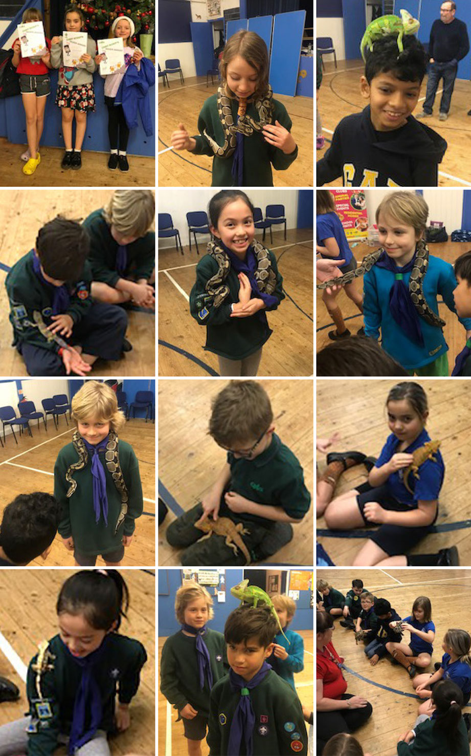 3rd Bromley Cubs with Animal World